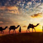 巨大サハラの黒い骨とは?サハラ砂漠で最大級の埋葬地発見!【世界まる見え】